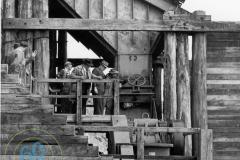 Cape-Grant-Quarry-Crusher-7